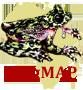 FrogMAP logo