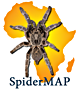 SPIDERMAP logo