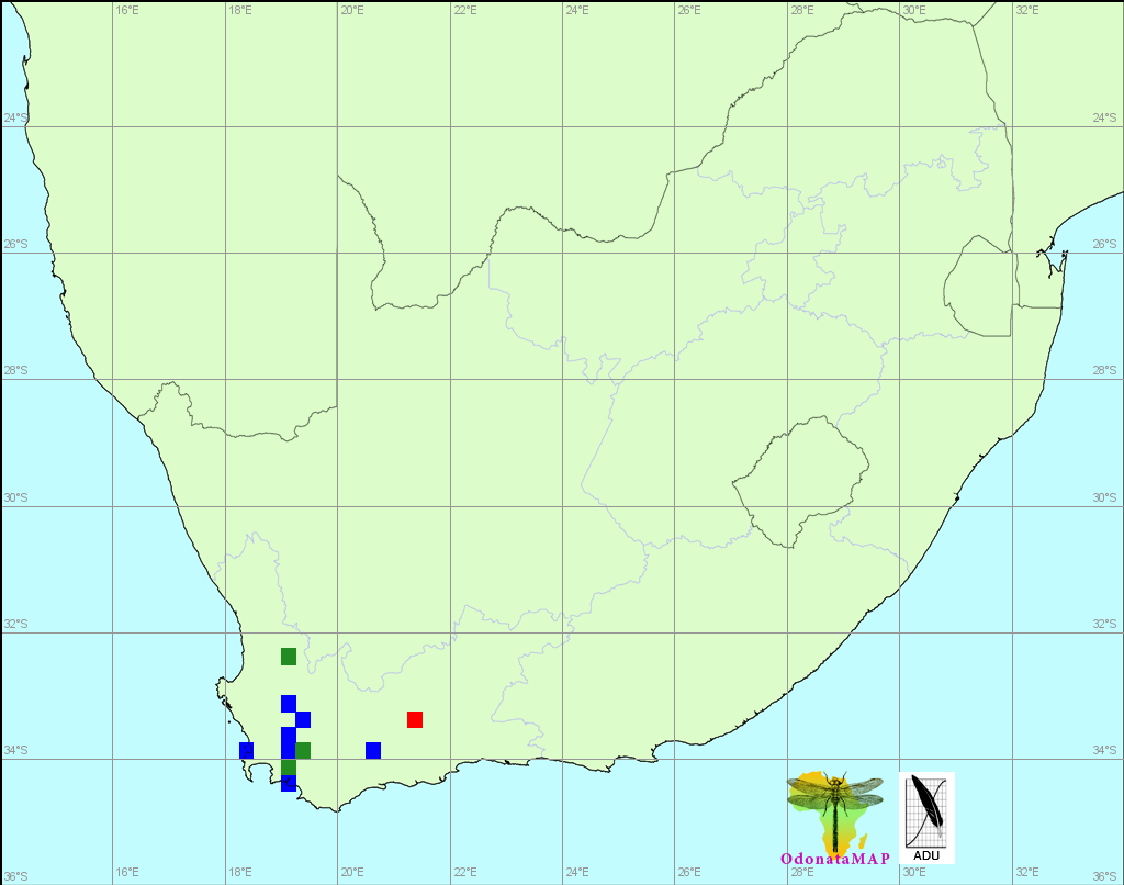 Elusive Skimmer Orthetrum TRubens Distribution Map